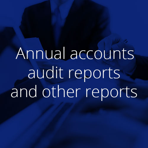 annual-accounts-audit-reports-and-other-reports